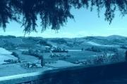 castel arquato gualtiero viola (10)