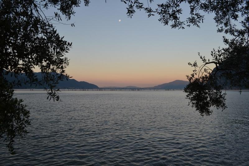 gualtiero viola-ponte floating piers (56)