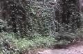 gualtiero viola forre tremosine lago di garda (1)