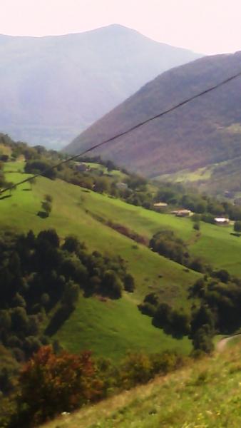 Gualtiero viola - vigolo (1)